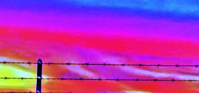 Barbed Wire Seizing a Sunset