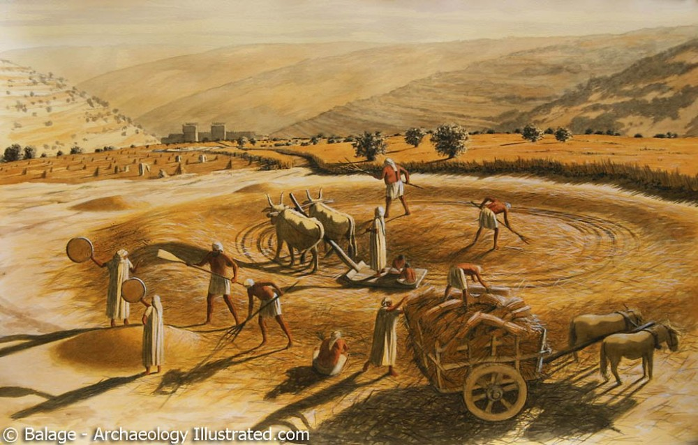 Araunahs Threshing Floor