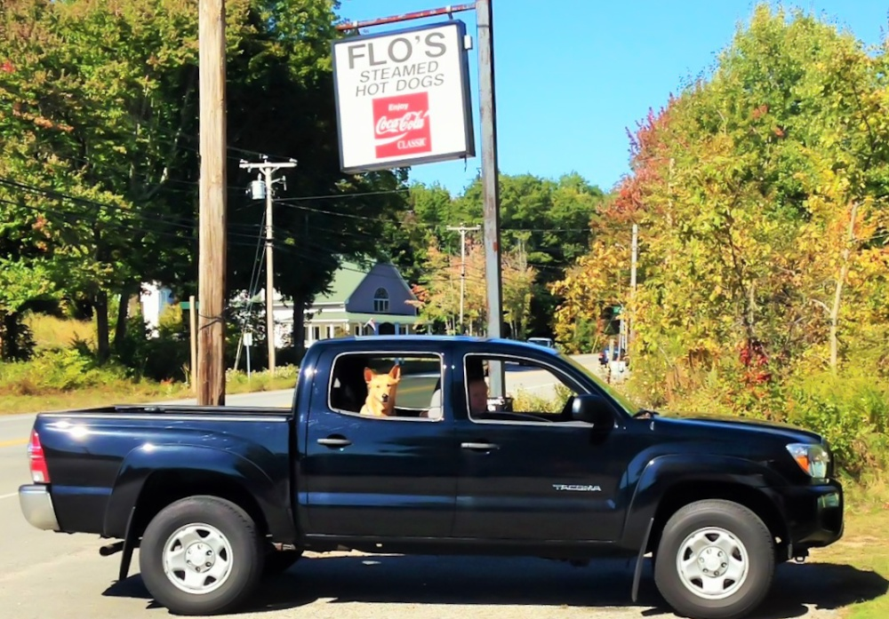 Flo's Hotdogs