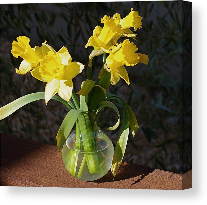 daffodils-in-vase-anthony-george-canvas-print